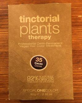 TINCTORIAL PLANTS – Cioccolato