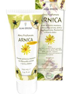 Alma Briosa Fitopomate – Arnica